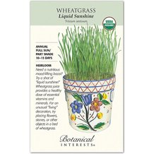 Wheatgrass Liquid Sunshine Organic Heirloom Seeds