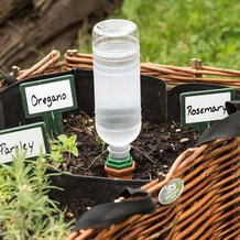 Plant Nanny Stakes for Recycled Bottles