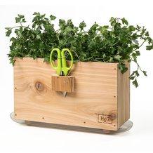 Herb Windowsill Box