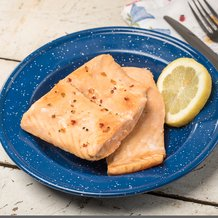 Freeze-Dried Salmon Fillets