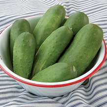 Double Yield Cucumber Seeds