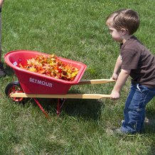 Child's Wheelbarrow