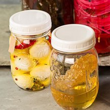 Plastic Mason Jar Lids for Home Canning - Regular