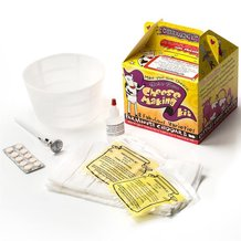 Common Cheeses Kit