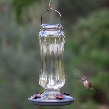 Hummingbird Clear Starglow Feeder 16 oz
