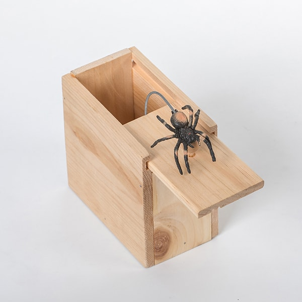 Spider Box Surprise