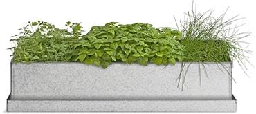 Herb Trio Windowsill Grow Box