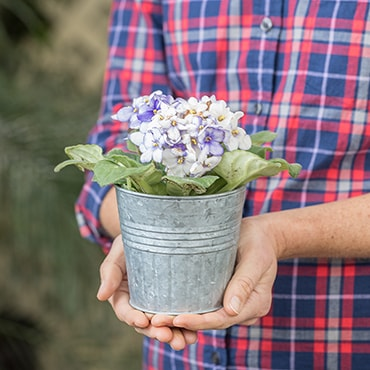 Mini Galvanized Round Planter