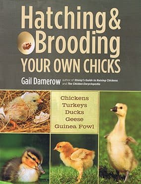 Hatching and Brooding Your Own Chicks Book