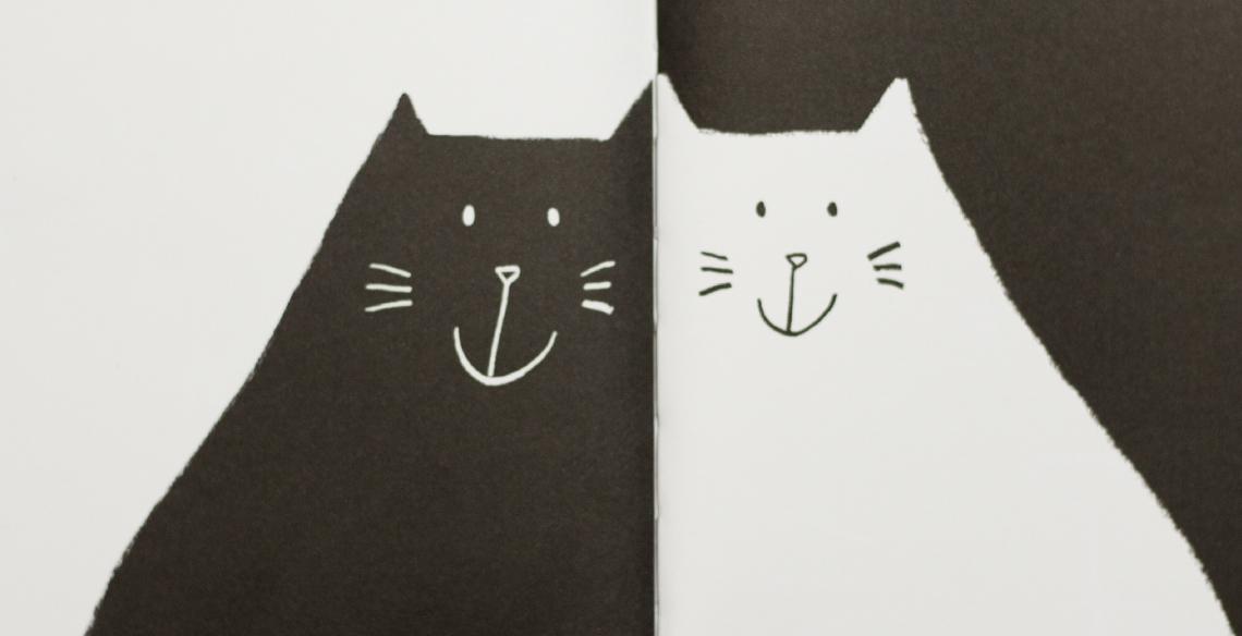 gato preto gata branca livros para crianças