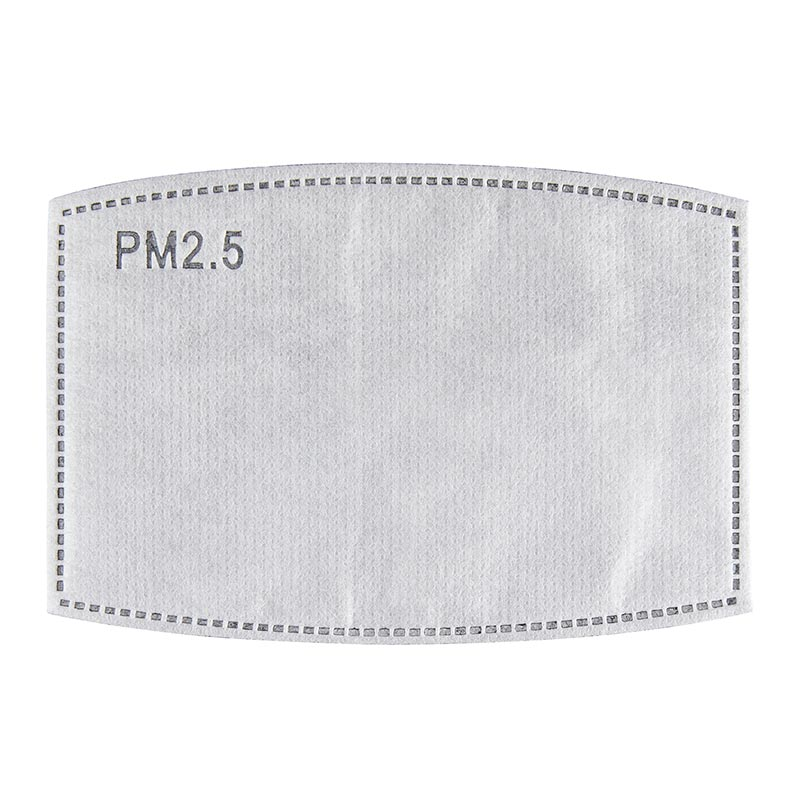 PM2.5 Carbon Filter for Adult Masks - 24/pk