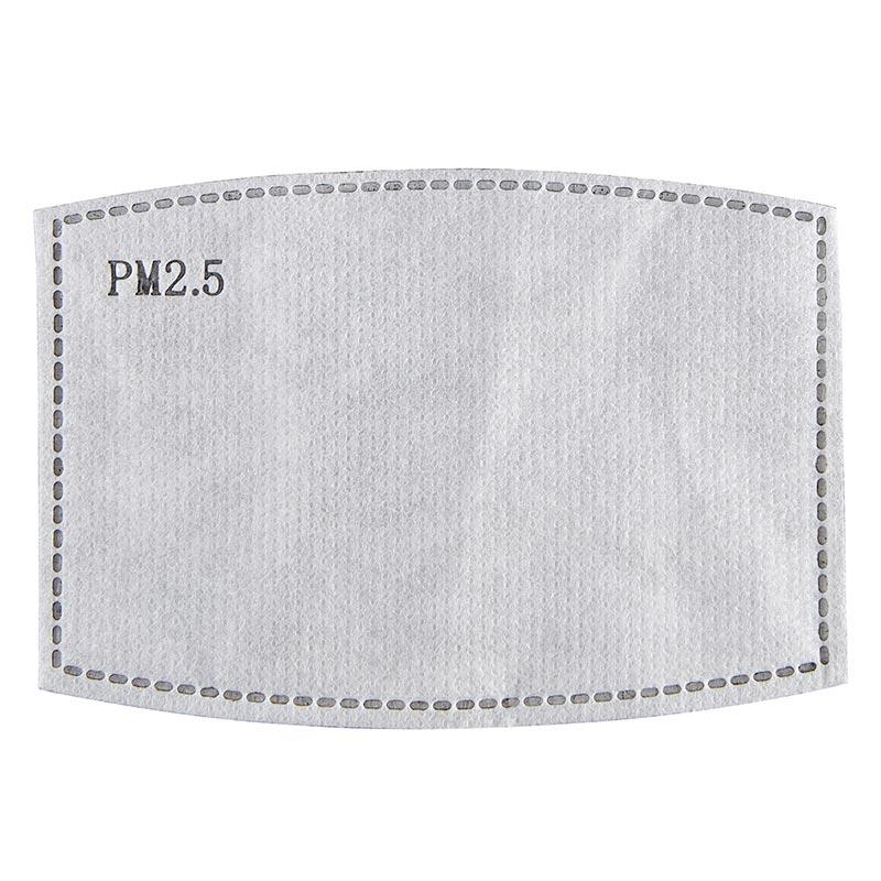 PM2.5 Carbon Filter for Childrens Masks-24pk