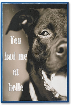 You Had Me at Hello Wall Plaque
