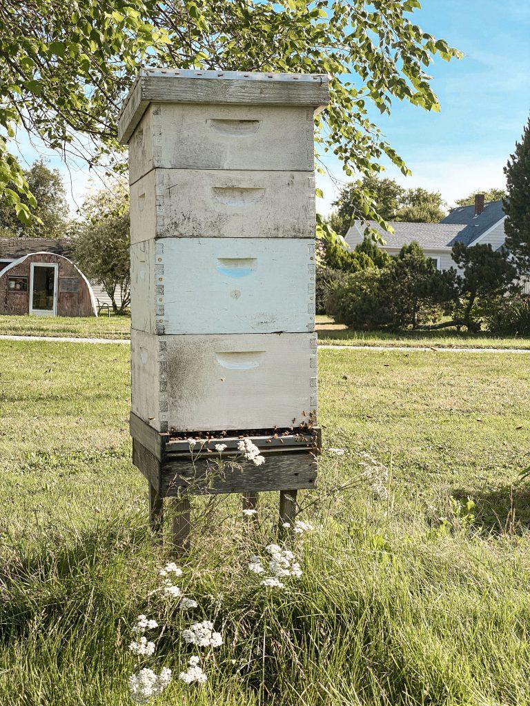 Beekeeper ri
