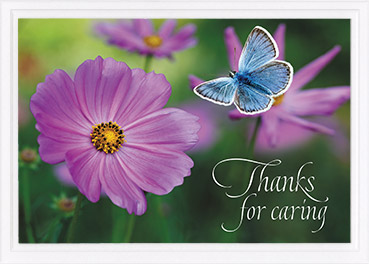 Thank You Card-Ru 1:8