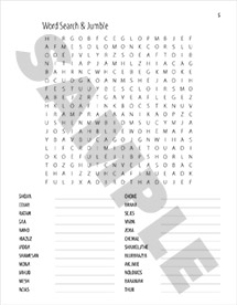 Bible Word Puzzles Vol. 2 Word Search