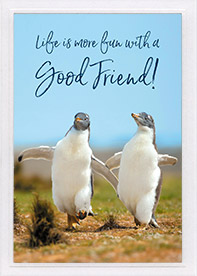 Friendship Card-Pr 18:24