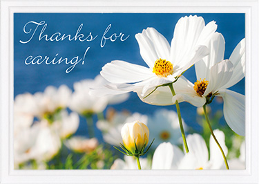 Thank You Card-Ps 41:1