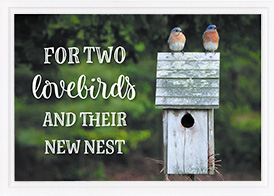 Wedding Card-Two Lovebirds