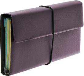 Deluxe Tract and Invitation Holder - Plum