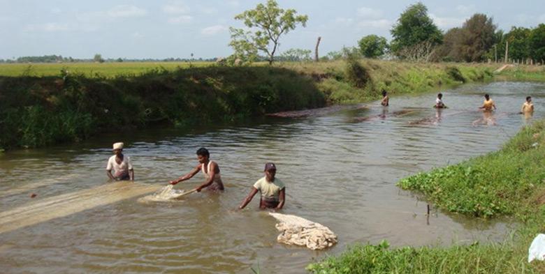 Kalamkari fabric washed in the river
