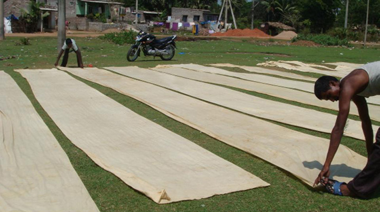 Kalamkari fabric drying outside
