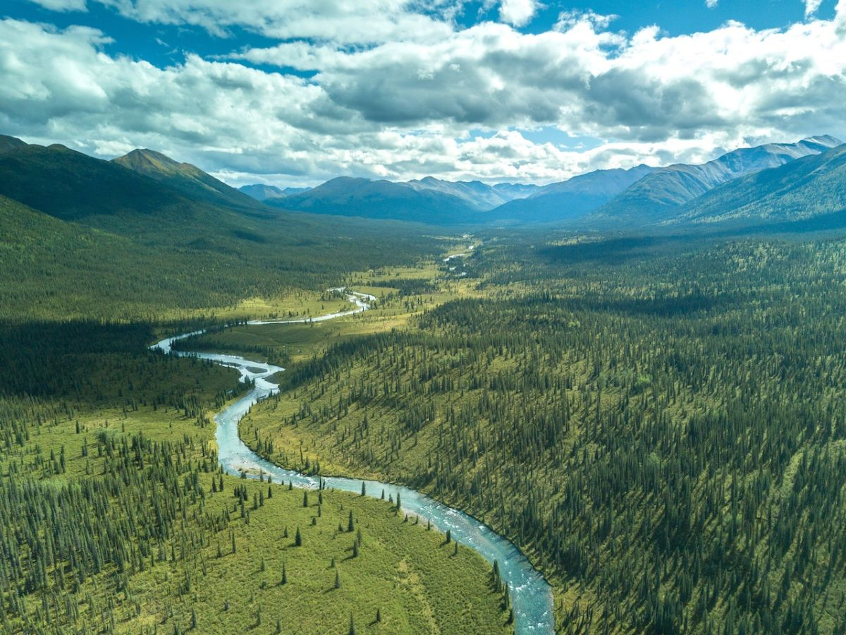 Best things to do in Northern BC