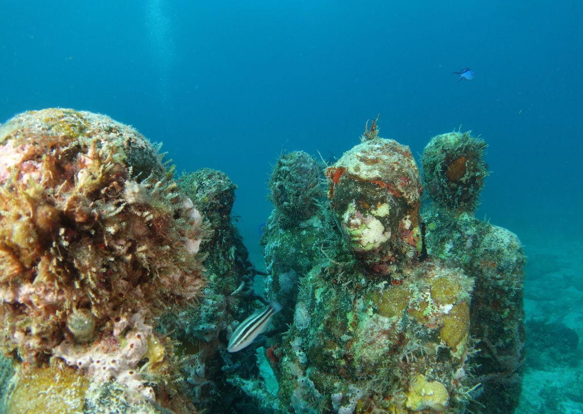 Best artificial reefs