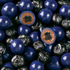 Blueberries & Chocolate Medley