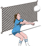 Backstops/Barrier Nets