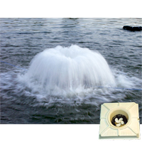 Aerator, Dual Prop, 1 Hp, 230V with 100' Cord