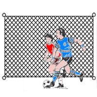 Soccer Backstop 16' x 60'
