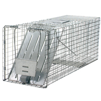 Professional Cage Traps for Raccoon, Woodchuck and Cats