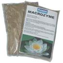 Macrozyme Pond Bacterium
