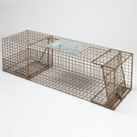 Trap for Small Raccoons, Opossum, Porcupine and Woodchuck, 'Kage-All'