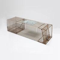 Trap for Squirrel, Feral Cat, Mink, Muskrat, Skunk & Rabbit, 'Kage-All'