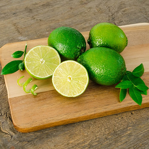 Citrus Key Lime Tree
