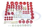 Prothane Total Suspension Bushing Kit, 00-05 Neon
