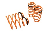 Megan Lowering Springs, 2012-19 Chevrolet Sonic