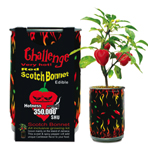 Challenge Red Scotch Bonnet Plant