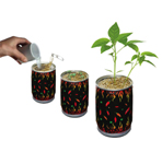 Challenge Trinindad 7 Pot Douglah Plant
