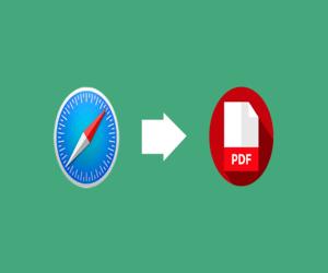 كيفية حفظ صفحة ويب بصيغة PDF على سفاري