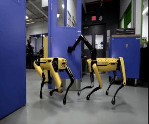 روبوتات SpotMini تعمل معًا لتنفيذ مهام مشتركة