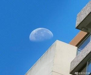 Huawei تنشر صورة ملتقطة بالهاتف Huawei Mate 40، وتشو...