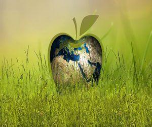 الربحية مقابل الاستدامة.. كيف تحقق أبل التوازن بينهما
