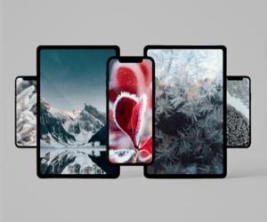 أجمل خلفيات iPhone وiPad في عام 2020