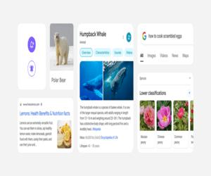 جوجل تحدّث تصميم صفحة نتائج البحث عبر الهواتف الذكية...