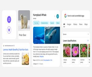 جوجل تدعم تطبيق Google Search بتصميم جديد للهواتف ال...