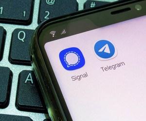سيجنال أم تيليجرام .. ما هو أفضل تطبيق دردشة حاليًا ؟