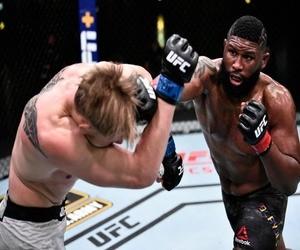 تيك توك أبرمت اتفاقية مع UFC لبث فنون القتال المختلطة